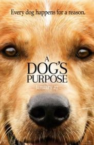 Can Dostum - A Dog's Purpose